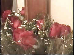 श्यामला एमआईएलए एक विशेषज्ञ है जब यह गैंगबैंग को बुके करने की बात आती फुल एचडी सेक्सी फिल्म फुल एचडी सेक्सी है